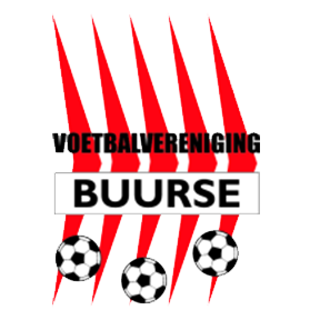 V.V. Buurse